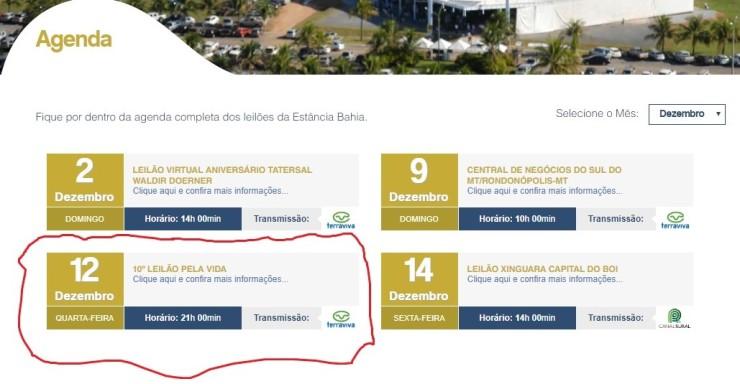 Leilão_Estância Bahia_HCanMT.Montagem