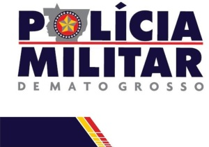 PM_MT_logo